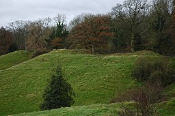 Motte and Bailey, Bacton - geograph.org.uk - 624704.jpg