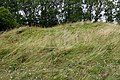 Mound on Notgrove Long Barrow as Viewed from the East.jpg
