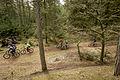 Mountainbiking in Varde.jpg