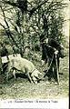 Moustiers-Sainte-Marie chercheur de truffes.jpg
