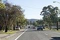 Mudgee NSW 2850, Australia - panoramio (4).jpg