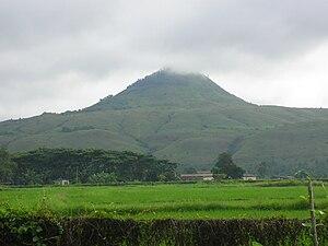 Bukidnon: Running In the Foggy Trail of Musuan Peak | Running ...