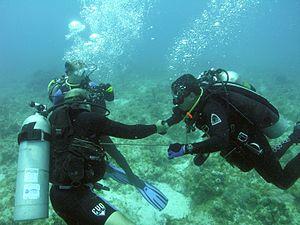 NEEMO 12 training handshake.jpg
