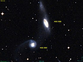 Image illustrative de l'article NGC 2992