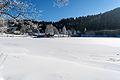 NSGOÖ 017 Gleinkersee Nordostbucht Februar 2015.jpg