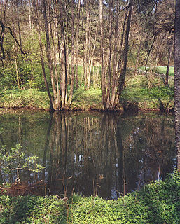 Nagold (river) river in Germany