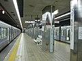 Nagoya-subway-E07-Nagoyako-station-platform-20100315.jpg