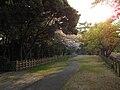 Nagoya Castle 2009 63.jpg