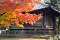 NaraTodaijiAzekura0246.jpg