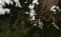 Nathula-terrain.png