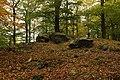 Nature reserve Vlčí důl in autumn 2014 (10).JPG
