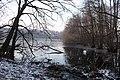 Naturschutzgebiet Zarth Januar 2019.jpg