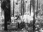 Navvies' camp, Waterfall (2733986897).jpg