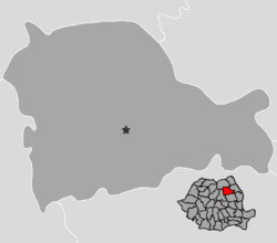 Neamt-district-base.png
