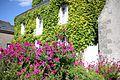 Neuillé-le-Lierre - Façade et fleurs.jpg