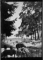 Neureut Schweineweide Landesarchiv Baden-Wuerttemberg Generallandesarchiv Karlsruhe 498-1 Nr. 6228 Bild 1 (4-1083982-1).jpg