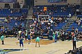 New York Liberty vs. Dallas Wings August 2019 22 (in-game action).jpg