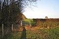 New bridleway gate east of Bulloak Farm - geograph.org.uk - 1589298.jpg