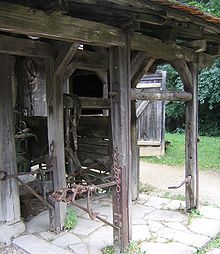 http://upload.wikimedia.org/wikipedia/commons/thumb/c/c1/Noe_klauenstand.jpg/220px-Noe_klauenstand.jpg