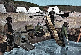 Nome Gold Rush A gold rush in Nome, Alaska, approximately 1899–1909