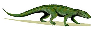 Santonian - Reconstruction of Notosuchus