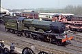 Nunney castle 5029 at Didcot.jpg