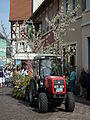 Obst- und Gartenbauverein Sommertagszug Ladenburg.JPG