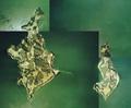 Okayama Hishima Islands aerial photograph.png