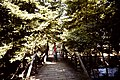 Old Bridge on the edge of Chorevton - panoramio.jpg