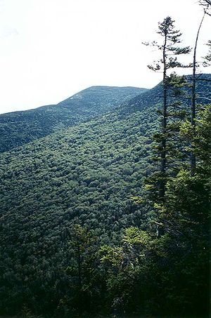 Old Speck Mountain - Image: Old Speck Mt Maine from Eyebrow Trail