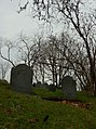 Old Tombstones in Concord, Mass.JPG
