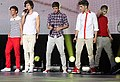 One Direction Sydney 6.jpg