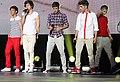 One Direction Sydney 6.jpg