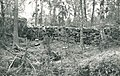 Otrala 1955, Tauno Häkli 2.jpg