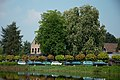 Oud-Heverlee St-Jean bomen.jpg
