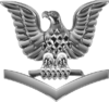U.S. Navy petty officer third class collar insignia