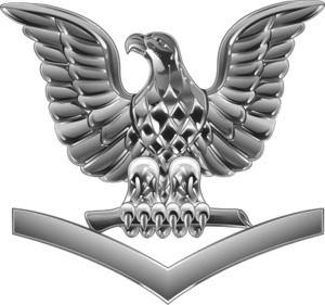 Petty officer third class - U.S. Navy petty officer third class collar insignia, also worn on jacket epaulettes and garrison covers.