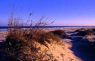 Padre Island - Padre Island sand dunes at sunset.