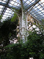 Palm house (Schönbrunn) tree-shaped cast iron column and plants 20080210.jpg