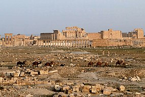 Ruins of a Roman temple in the middle of the ancient city of Palmyra