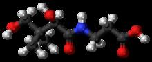 嗜酸性分子的分子壳