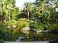Park pálmafákkal, Monaco.jpg