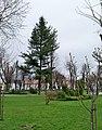 Park w sokołowie młp.jpg