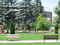 Parku i qytetit.jpg