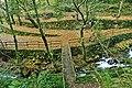 Parque da Cabreia - Portugal (3363240958).jpg