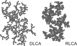 Particle aggregation - Structure of larger aggregates formed can be different. In the fast aggregation regime or DLCA regime, the aggregates are more ramified, while in the slow aggregation regime or RLCA regime, the aggregates are more compact.