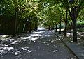 Passeig del parc de Benicalap.JPG