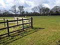 Pasture, Stokenchurch - geograph.org.uk - 743463.jpg