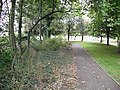 Path by Craigs Roundabout - geograph.org.uk - 1753283.jpg