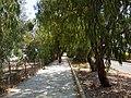 Path to the sea... - panoramio.jpg